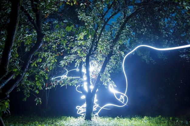 Plano de fundo dramático - árvore atingida por um raio do céu escuro