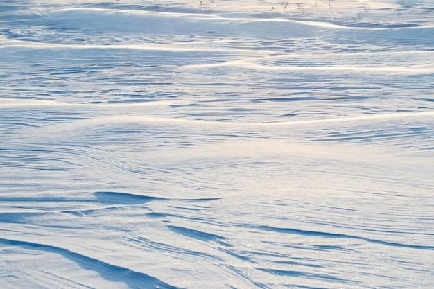 Plano de fundo nevado, superfície ondulada coberta de neve da terra após uma nevasca pela manhã sob o sol