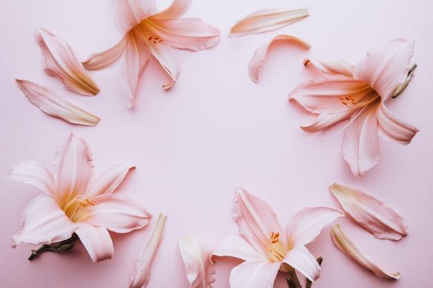 Plano de fundo padrão floral. quadro de flores de lírio rosa plano deitado no tampo da mesa pastel, cartão de primavera, vista superior. cartão de primavera ou verão com flores