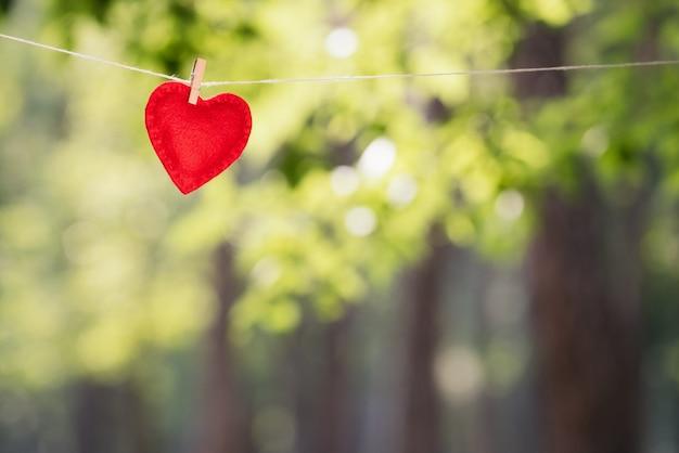 Plano de fundo para o projeto para o dia dos namorados. coração vermelho - um símbolo do amor em um fundo de folhagem verde borrada