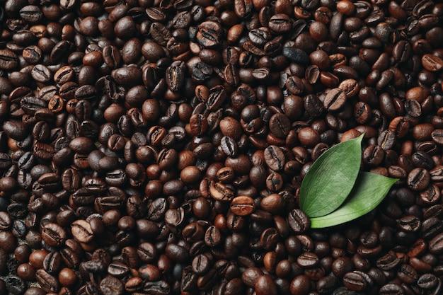 Plano de fundo texturizado de grãos de café com folhas, close-up