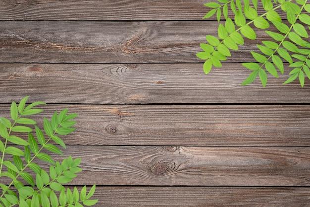 Plano de fundo texturizado de madeira marrom com folhagem verde nos cantos e espaço para cópia no meio