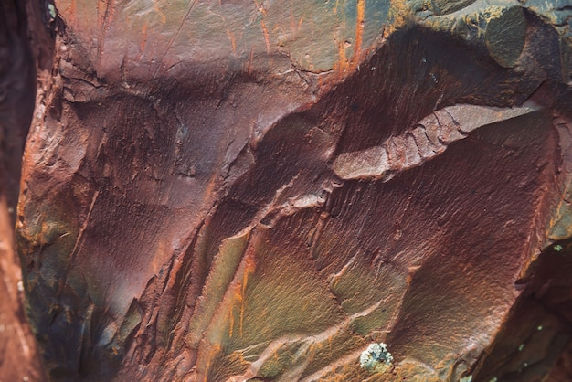 Plano de pedregulho multicolorido em macro. superfície bonita rocha close-up. pedra texturizada colorida. fundo detalhado surpreendente de pedregulho das montanhas com musgos e líquenes. textura natural da montanha.
