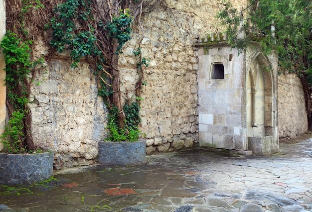 Planta antiga no fundo da parede de pedra do antigo palácio