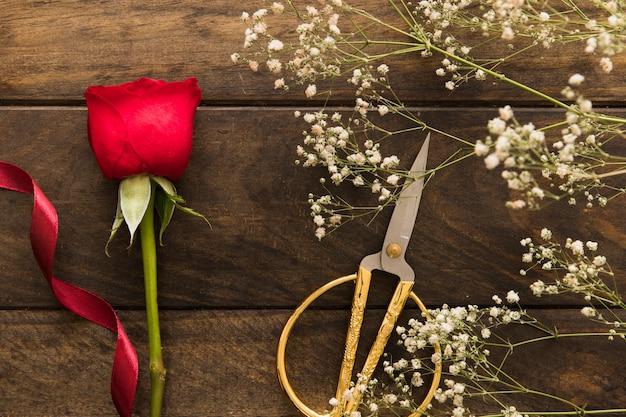 Planta com flores perto de tesoura e rosa