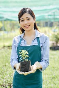 Planta de exploração de florista