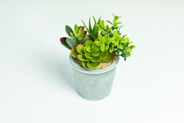 Planta de flor artificial isolada no branco