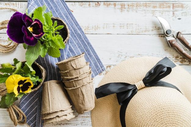 Planta de florescência amarela e violeta do amor perfeito com secateurs; chapéu; potes de turfa e guardanapo na mesa de madeira