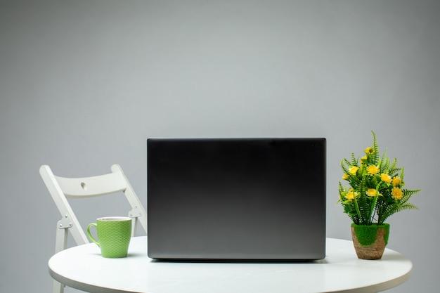 Planta de laptop e copo verde