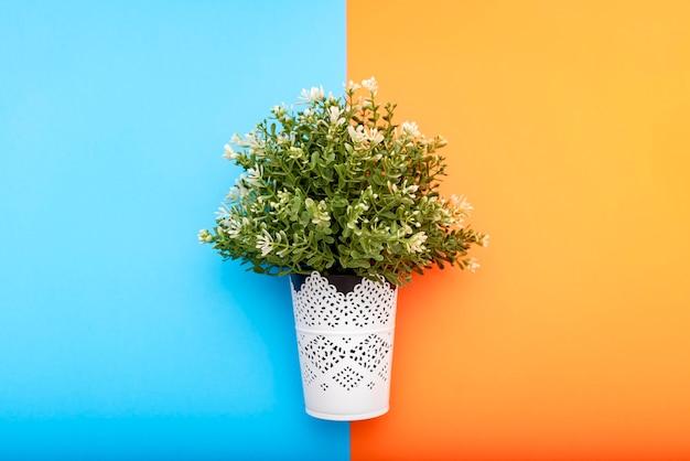 Planta de plástico em um fundo azul e laranja