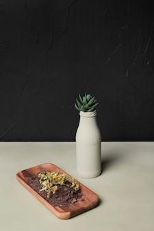 Planta decorativa dentro do vaso mínimo