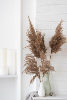 Planta doméstica em arranjo de decoração de vaso