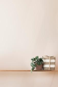 Planta e cesta em uma prateleira