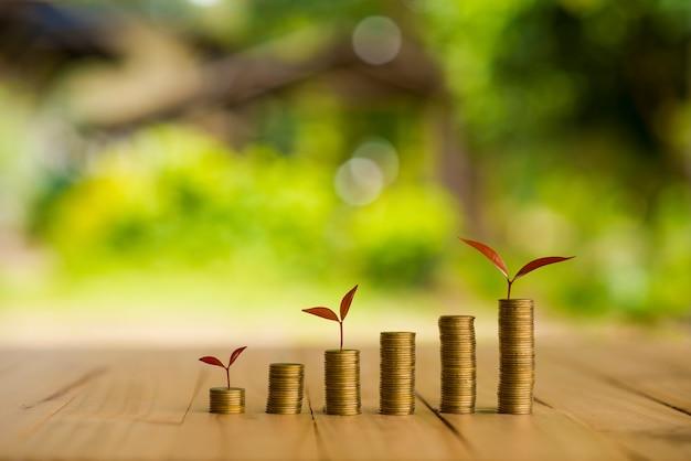 Planta em crescimento em dinheiro de moedas, csr em negócios