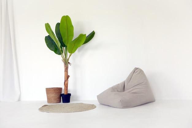 Planta em vaso colocada perto do saco de feijão e tapete contra a parede branca em uma sala de estilo minimalista