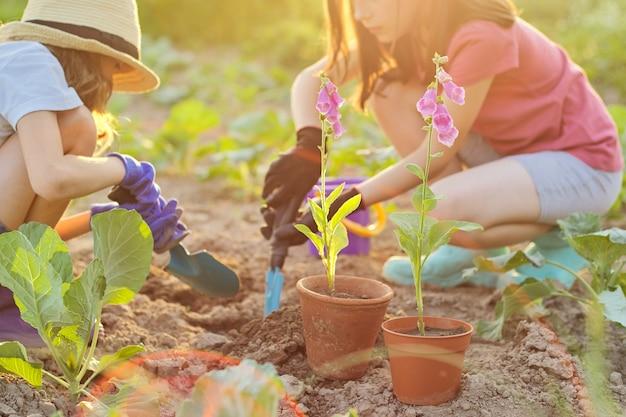 Planta em vaso, crianças, duas meninas com pás de jardim, balde, plantando flores