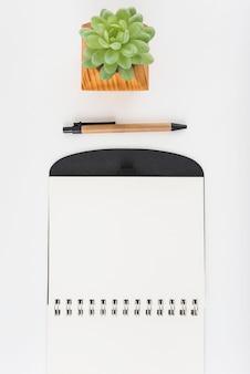 Planta em vaso perto de caneta e bloco de notas