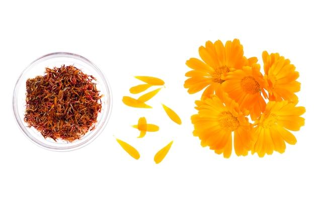 Planta medicinal com flores de laranjeira calendula officinalis