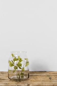 Planta mínima abstrata em um espaço de cópia de vaso