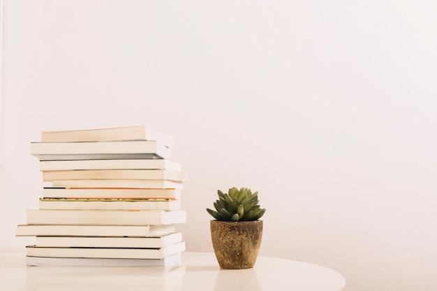 Planta, perto, pilha livros