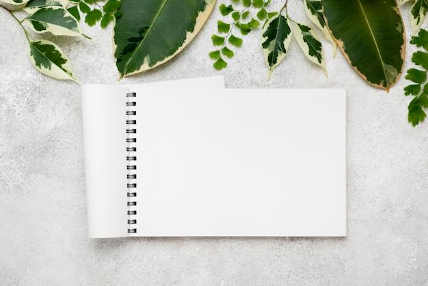 Planta plana de lindas folhas de plantas com caderno