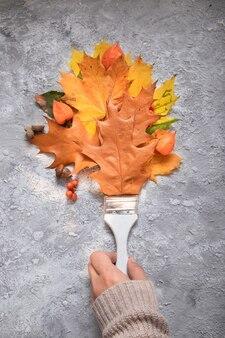 Planta plana folhas de outono de laranja, escova, physalis, vista superior de rowan