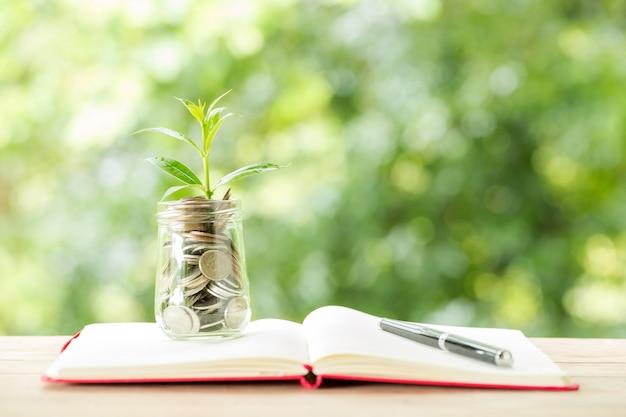 Planta que cresce de moedas no pote de vidro na natureza turva