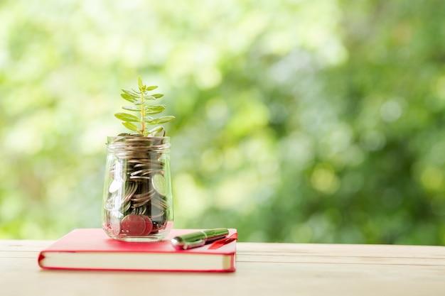 Planta que cresce em moedas de poupança