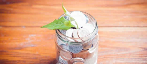 Planta que cresce fora do frasco de moedas na mesa de madeira - investment growth concep