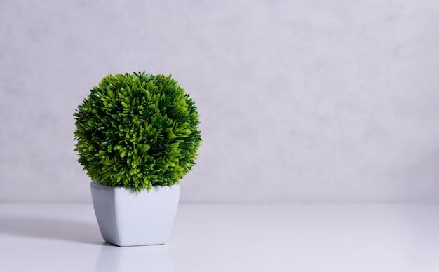 Planta suculenta artificial em vaso de cerâmica no balcão ao lado da parede.