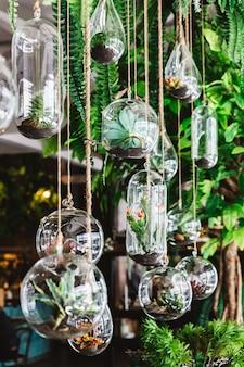 Planta verde decorada em muitas formas de frascos de vidro pendurados com corda no teto com plantas. decoração e atmosfera interior moderna do restaurante.