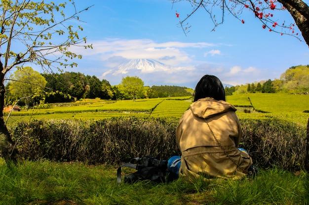Plantação de chá na parte de trás com vista para o monte fuji com céu claro em shizuoka, obuchi sasaba, japão