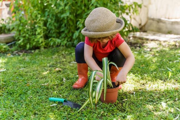 Plantação de criança