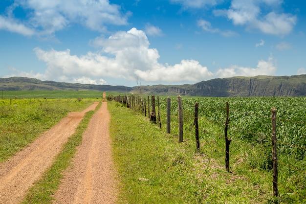 Plantação de soja estrada montain brasil