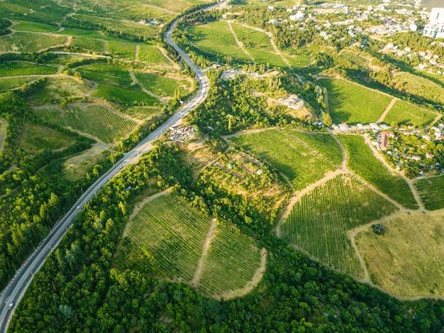 Plantações aéreas na montanha durante a temporada de verão perto da aldeia