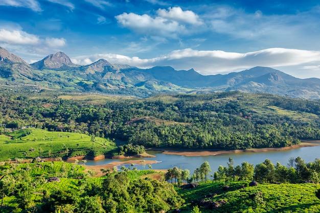 Plantações de chá e rio nas colinas. kerala, índia