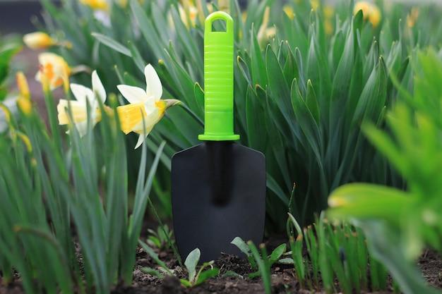 Plantando flores no jardim ensolarado, pá de jardim