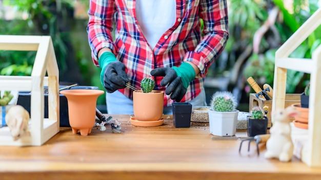 Plantar cactos e árvores em crescimento. jardinagem doméstica e atividade recreativa no jardim botânico.