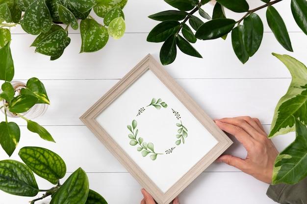 Plantar gráficos em porta-retratos no fundo da planta