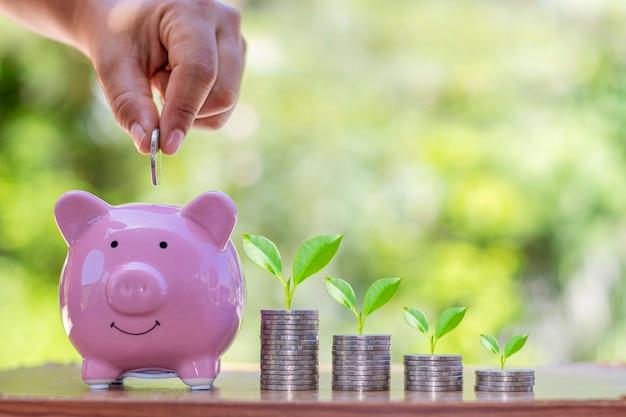 Plantar mudas em uma pilha de moedas