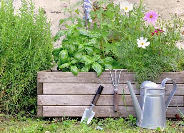 Plantas aromáticas e flores em um jardineiro de madeira com ferramentas de jardinagem