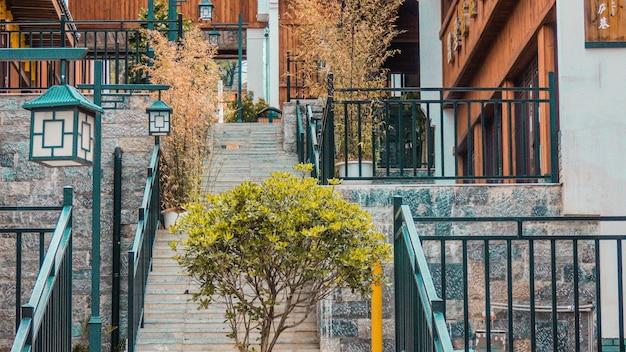 Plantas com folhas verdes em escadas