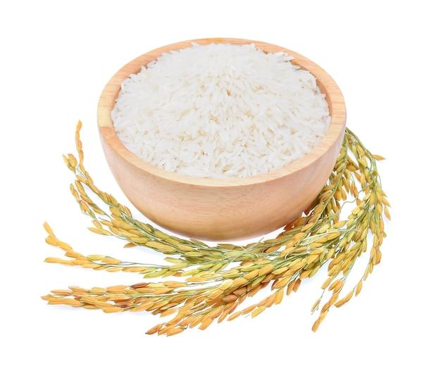 Plantas de arroz, grãos de arroz jasmim tailandês em uma tigela de madeira no fundo branco