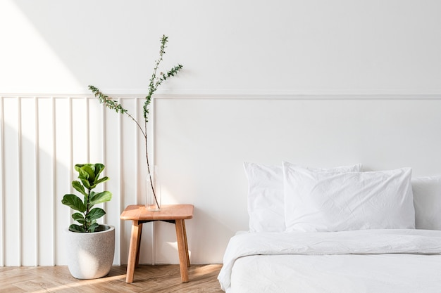 Plantas de casa por um colchão no chão