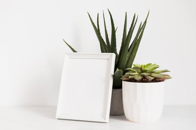 Plantas de escritório com moldura
