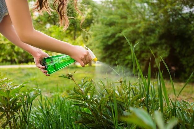 Plantas de pulverização na horta e horta com um spray protetor