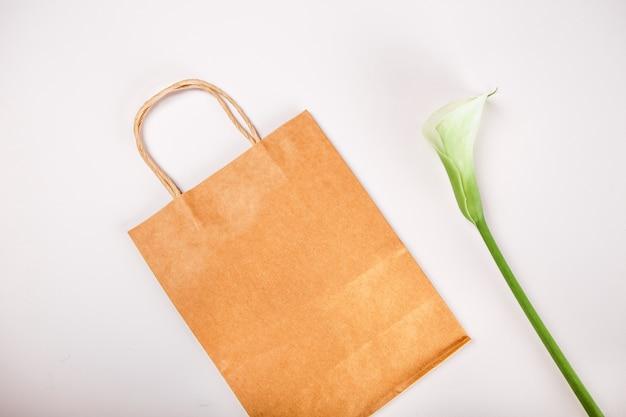 Plantas de saco de compras de papel kraft marrom dentro conceito primavera