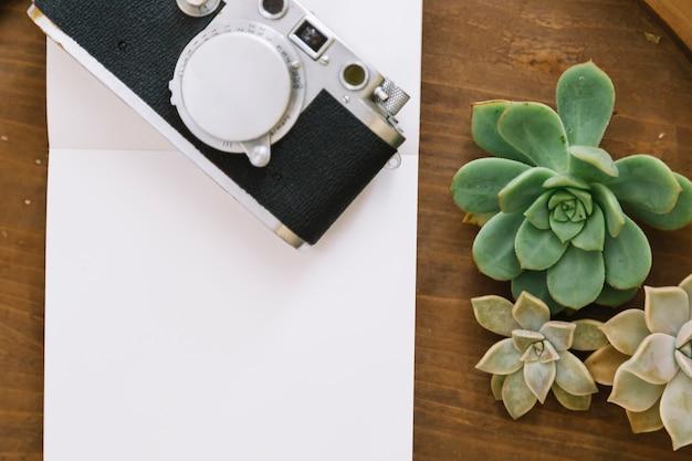 Plantas e câmera