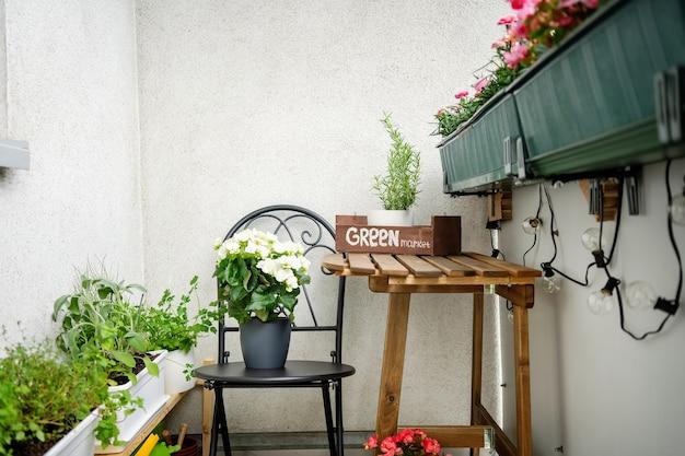 Plantas e flores na varanda aconchegante. zona de conforto. jardinagem em um apartamento