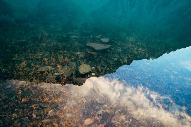 Plantas e pedras no fundo do lago de montanha com água limpa